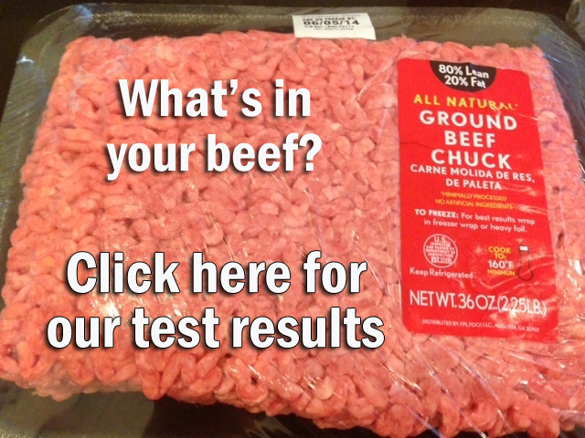 Beef Testing Results