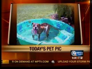 Monday's Pet Pic: Meet Teega from Loxahatchee