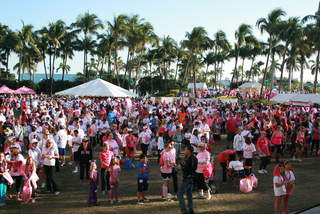 'Race for the Cure' photos 01/26/13