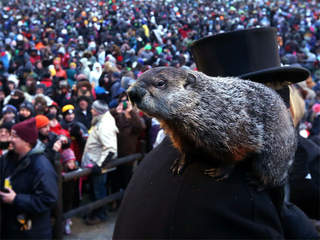 WPTV Punxsutawney Phil Groundhog day