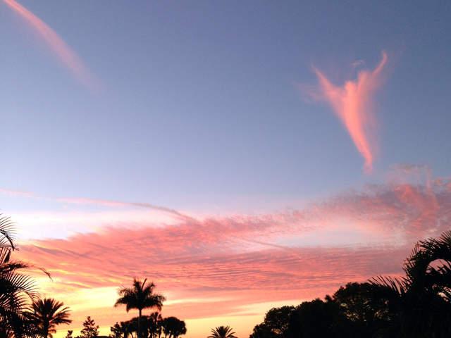 Cosas raras en el cielo Angel-brandon_stockwell_20130314181207_640_480
