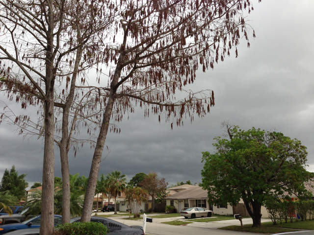 Photos Wptv Viewers 39 Severe Weather Images On April 4