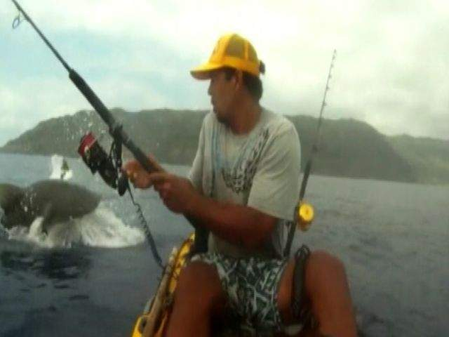 Shark encounter off hawaii video isaac brumaghim loses for Kayak fishing hawaii