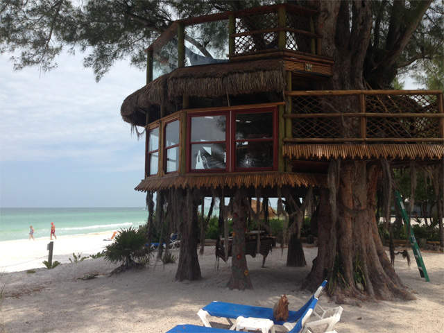 PHOTOS: The coolest tree house in Florida