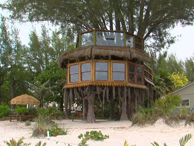 A Holmes Beach couple is fighting with city officials to save their giant  tree house. The tree house located at Angelino's Sea Lodge is becoming  quite the ...