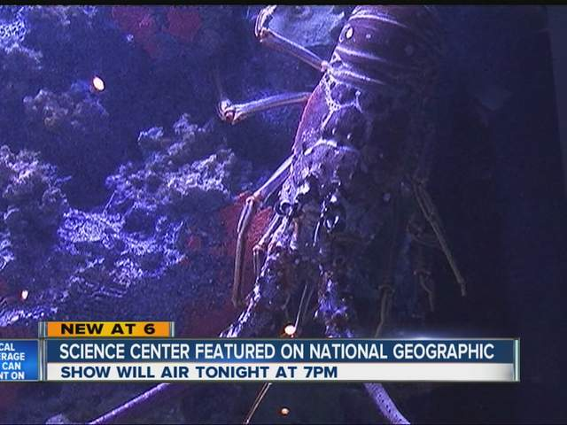 South Florida Science Center And Aquarium Featured On Nat