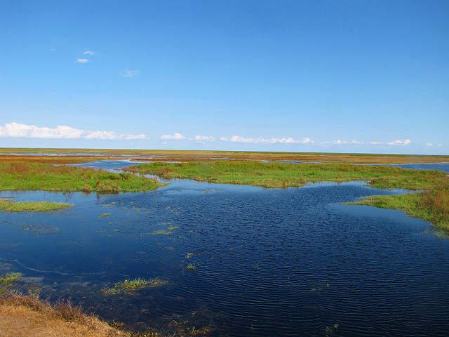 U S Army Corps Of Engineers Lake Okeechobee Water