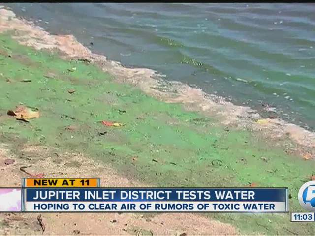 Jupiter Inlet Tested For Toxic Algae