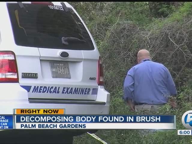 Pbso Investigates Badly Decomposed Body Found In Palm Beach Gardens Saturday Morning