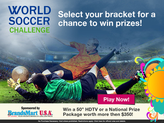Make your picks in the World Soccer Challenge