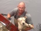 Manatee consoles dog stuck on Tampa river bank