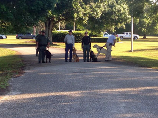 Cost of cadaver dogs search released