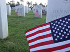 Flags placed on veterans' graves at cemetery