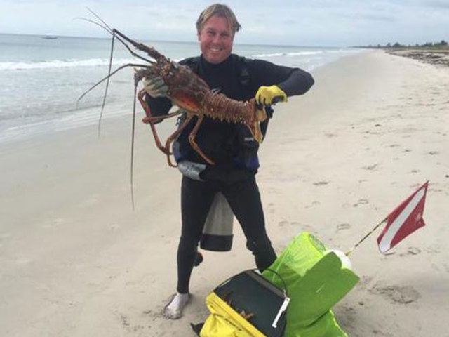 Mini season florida lobster online for free tv shows for Florida 3 day fishing license