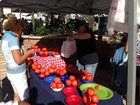 West Palm Beach GreenMarket returns on Saturday
