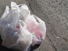 Coastal communities could soon ban plastic bags