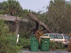 NWS: EF1 tornado touched down in Hobe Sound