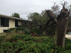 Big storm damage in Hobe Sound