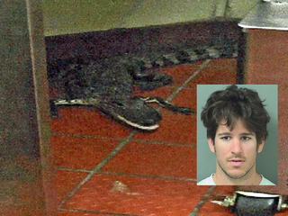 Parents say gator toss was 'stupid prank'
