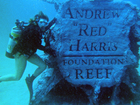 Expansion of the Andrew Harris Reef begins