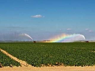 Feds probe Florida handling of pesticide case