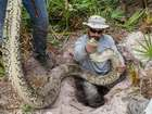 Florida offers new incentives to hunt pythons