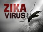 Reports: Zika spreads to Miami Beach