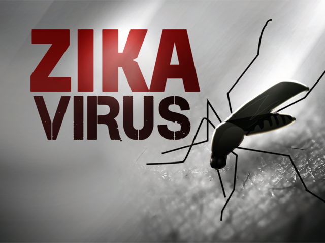 4 Zika cases likely came from Fla. mosquitoes