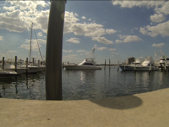 Petition update channel 5 newscast for Sailfish marina