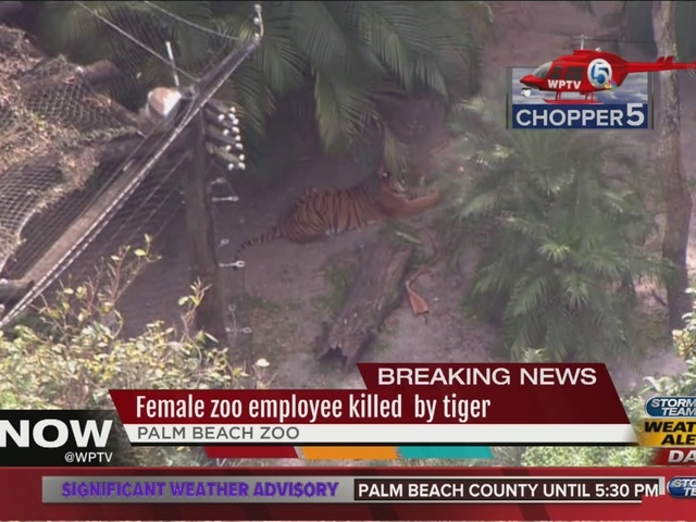 Palm Beach Zoo mourns death of zookeeper