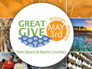 DONATE! The Great Give is Tuesday
