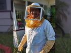 Man stung by 150 bees in Fort Pierce