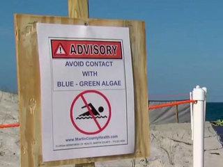 No-swim advisories for some Sarasota beaches
