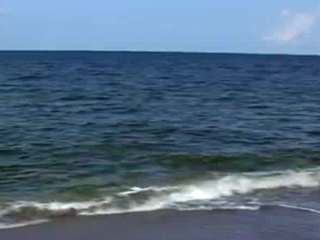 Martin Co. sets up beach conditions hotline