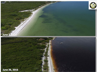 Fla. West Coast seeing negative effects too
