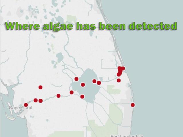Algae Bloom In Florida 2018 Map Your Gallery