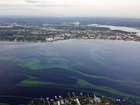 Algae may hit boat owners in the pocketbook