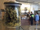 Calif.  to vote on legalizing recreational pot