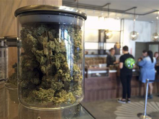 California ponders legal pot, paying taxes