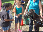 Youngsters learn to interact & care for animals