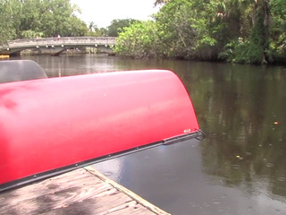 Algae drives away 4th of July business in Stuart