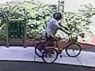 Tricycles stolen from Arc of Palm Beach County