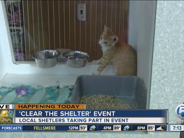 'Clear the Shelter' event