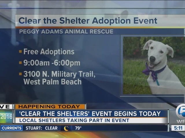 ''Clear the Shelters' event begins today