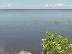 Workshops scheduled after Lake O algal blooms
