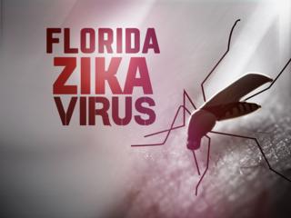 Fla. DOH releases Zika Virus FAQ