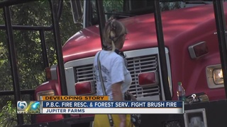 Brush fire reported in Jupiter Farms