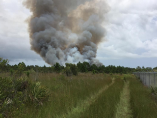 Brush fire near Sebastian Airport contained