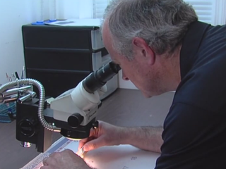Martin Co. works to control mosquito population