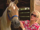 Loxahatchee residents ramp up horse security